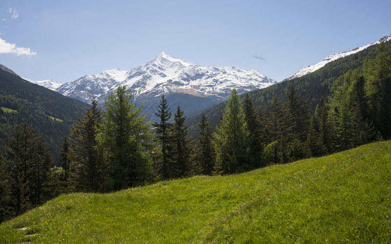 STELVIO A N°1 – 25 giugno – Parco Nazionale dello Stelvio – da Valfurva (SO) a Cancano (SO)