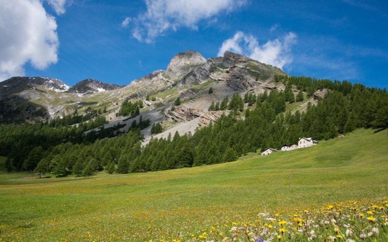 STELVIO A N°2 – 26 giugno – Parco Nazionale dello Stelvio – da Cancano (SO) a Isolaccia (SO)