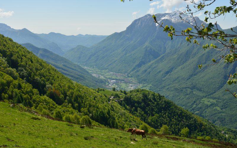 TAPPA 35 – 15 luglio – da Cusino (CO) a Cavargna (CO)