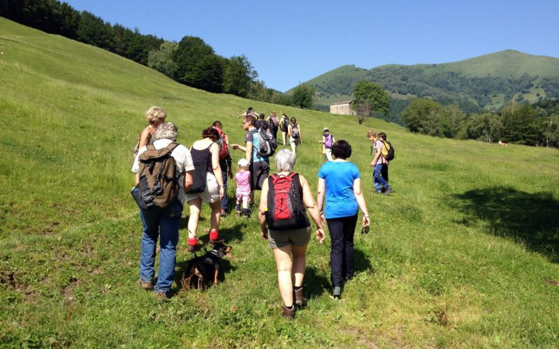 TAPPA 38 – 18 luglio – da Orimento (CO) a Alpe Comana (CO)