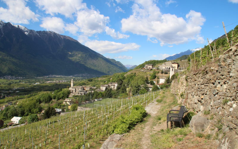 TAPPA 21 – 1 luglio – da Sondrio (SO) a Buglio in Monte (SO)