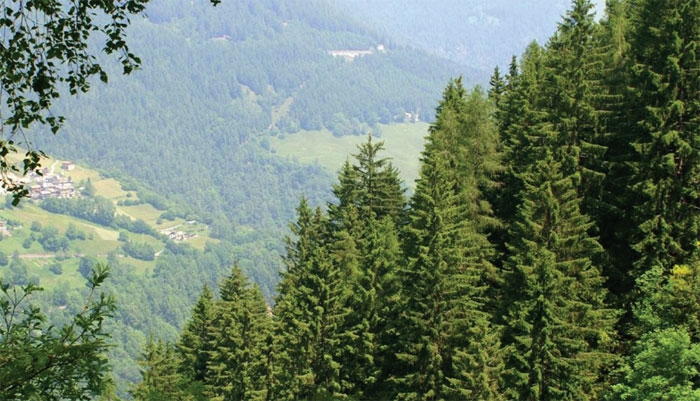 TAPPA 16 – 26 giugno – da Rifugio Passo del Vivione (BG) a Passo di Tanerle e ritorno Rifugio Passo del Vivione (BG) (tappa aperta a tutti)