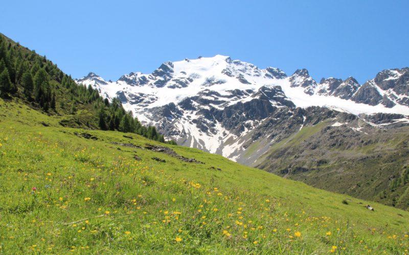 STELVIO A N°3 – 27 giugno – da Isolaccia all'Alpe Boron e a Grosio (SO)